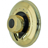 ZURN* TEMP-GARD* II ESCUTCHEON AND HANDLE POLISHED BRASS FINISH