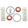Wilkins 950XL 1-1/4'' to 2'' Rubber and Spring Kit Lead Free